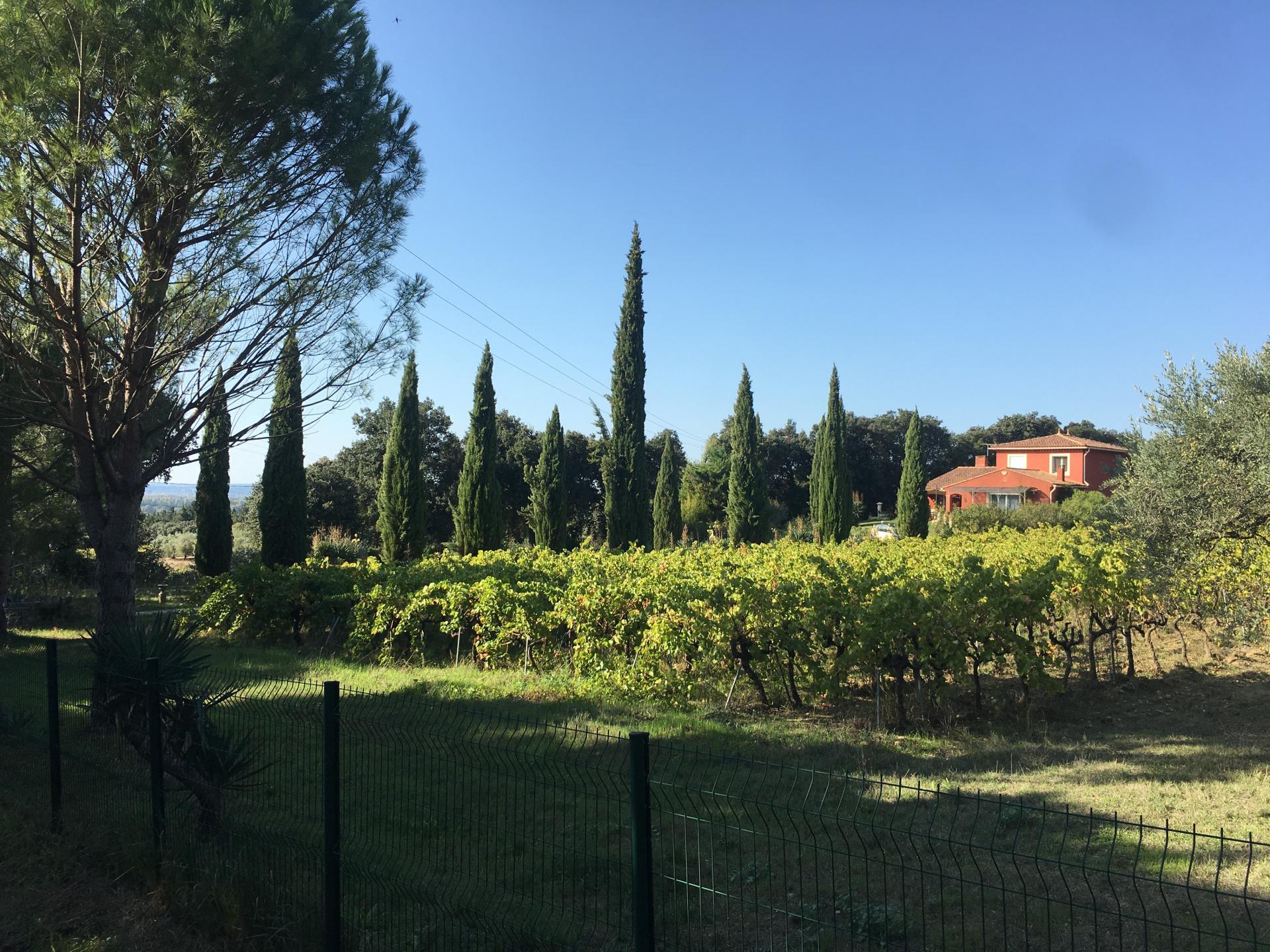 Le Vignoble du Domaine